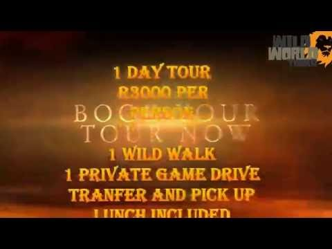 8 Days / 7 Nights Kruger, Pilanesberg and Cap...