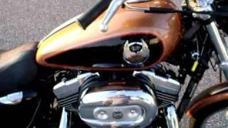 5. 2008 Harley Davidson Sportster XL1200C 105th anniversary edition