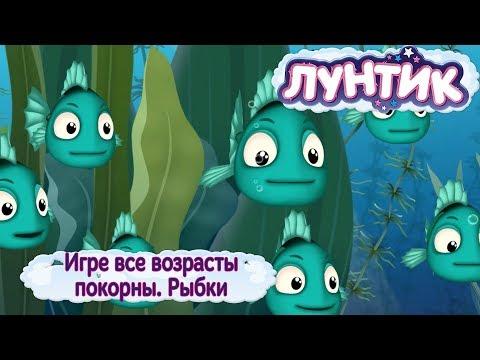 """Рыбки  Лунтик  489 серия """"Игре все возрасты покорны"""""""