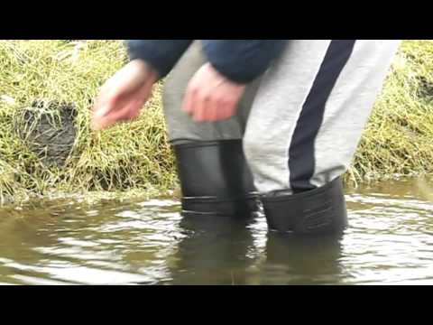 Wet wellies with the old