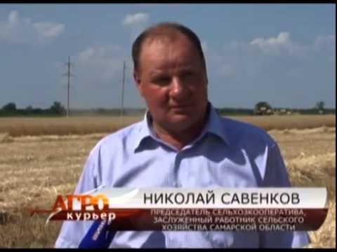 Самарские аграрии довольны промежуточными итогами уборочной кампании