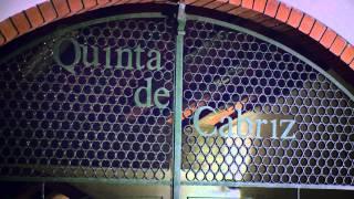 Quinta de Cabriz - Vinhos a bordo TAP