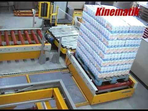 Pallet Shuttle Conveyor - Pallet Conveyor System