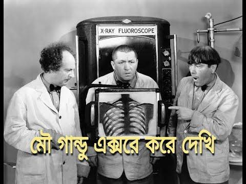 3 Stooges Bangla Dubbing Original 1080p Full Video