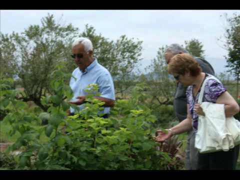 Cursillo de Iniciación al Belenismo 2010 en Villava-Atarrabia (Navarra)