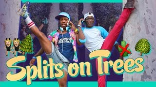 #SplitsOnTrees by Todrick Hall (featuring Unterreo Edwards)