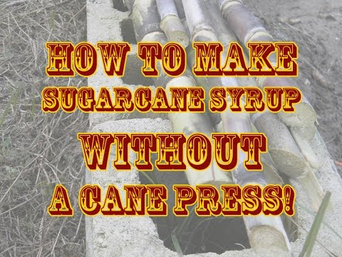 How To Make Sugarcane Syrup WITHOUT a Cane Press!