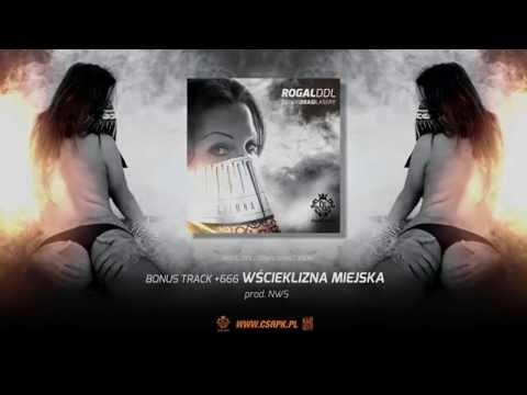 Rogal DDL / CS - WŚCIEKLIZNA MIEJSKA // Prod. NWS.