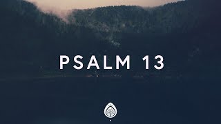 Alisa Turner ~ Psalm 13 (Lyrics)