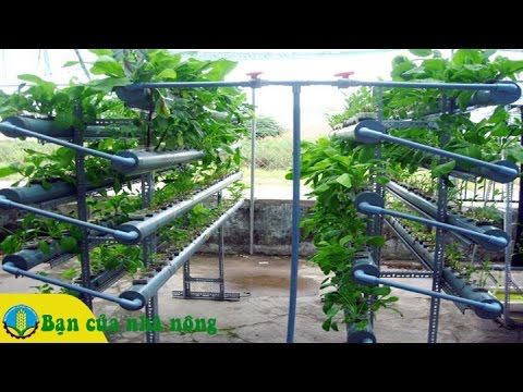 Processing to install the Greenbot hydroponic System