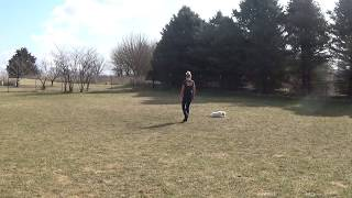 Holly Training with Willow the Golden Retriever in Glencoe Illinois