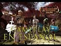 Jugando Dungeons Dragons Online