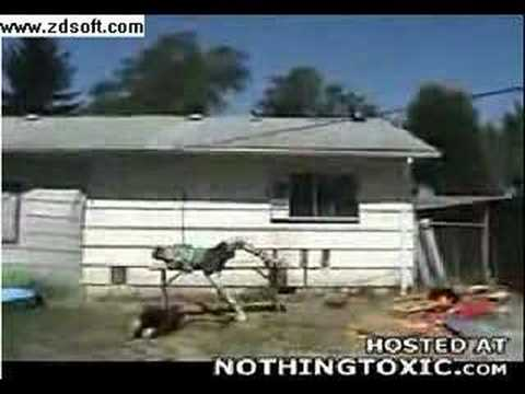 Un tarado salta desde el techo de su casa