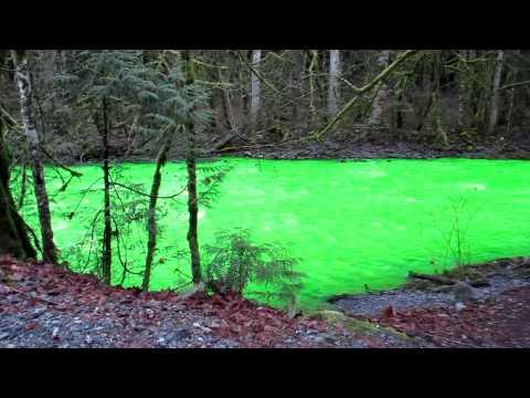 フルオレセインにより蛍光色の緑色に変色したカナダのゴールドストリーム川
