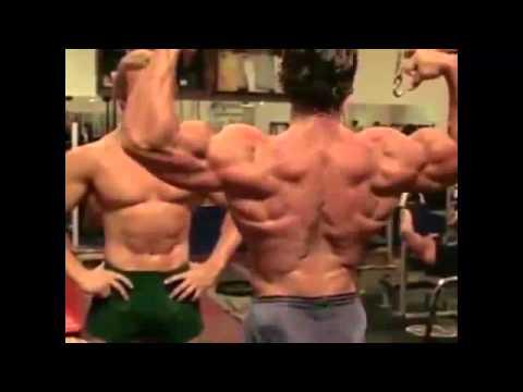 Какие мышцы растут быстрее всего