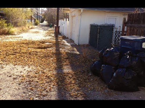 This is how our neighbor cleans up her leaves
