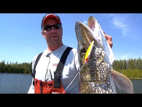 Crank big Rapalas for Super-Sized Shallow, Spring Pike --