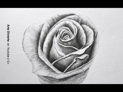 Cómo dibujar una rosa a lápiz - Dibujando una flor - Flores