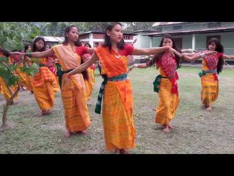 Video Bagurumba bodo dance download in MP3, 3GP, MP4, WEBM, AVI, FLV January 2017