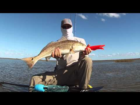 How To Sight Cast Redfish From A Kayak