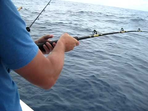 Fish The Deep Fishing Charter