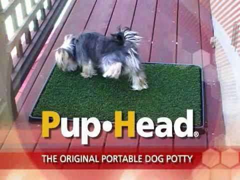 PupHead Anleitung und Gebrauch
