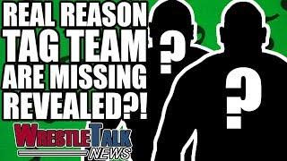 Video REAL REASON Sanity & Authors Of Pain SCRAPPED In WWE! | WrestleTalk News Jun 2018 MP3, 3GP, MP4, WEBM, AVI, FLV Juni 2018