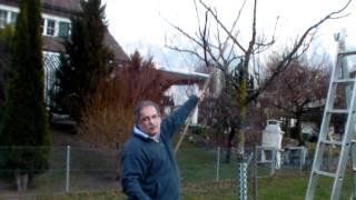 #294 Schneiden im Garten 2011 - Apfelhochstamm Wildmauser 5v6