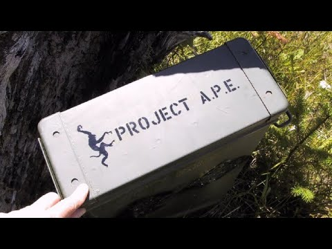 Project A.P.E. History Part Two