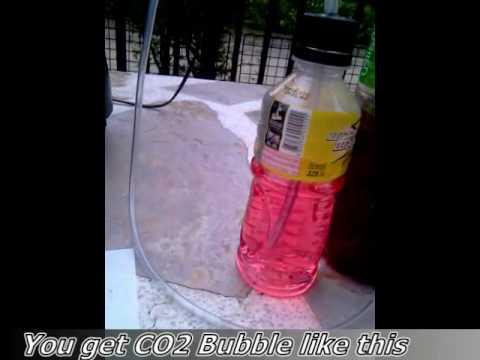 mosquito trap with carbon dioxide yeast#1.mp4