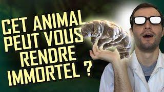 Video CET ANIMAL PEUT VOUS RENDRE IMMORTEL ? Vrai ou Faux #23 MP3, 3GP, MP4, WEBM, AVI, FLV Agustus 2018