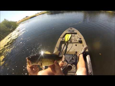 Kayak frog fishing (Farm Pond)