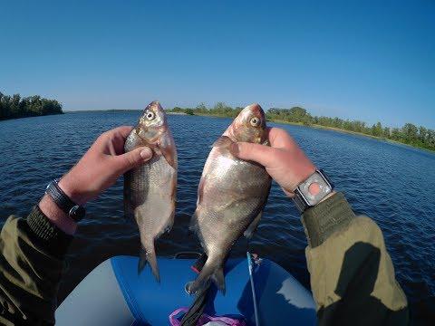 Смотреть новости Рыбалка на кольцо. Волга. Охота на гигантского леща. Россия на видео и фото