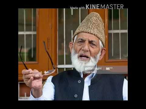 Ailing Geelani throws surprise, says 'I quit from Hurriyat forum'