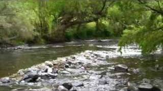 Bandon Grove Australia  city pictures gallery : Campsite Bretti Reserve