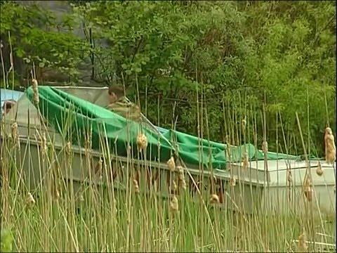 прогноз рыбалки нижний ломов