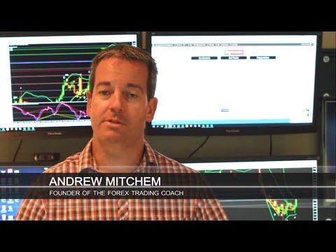 Andrew mitchem forex