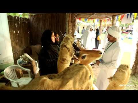 مهرجان صون الطبيعة في حديقة الحيوانات في العين 2016