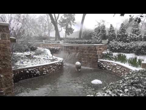 Winter Weather in the Gardens