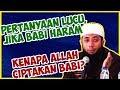Download Lagu Pertanyaan lucu, Jika babi haram, kenapa Allah ciptakan babi? ● Ustadz Khalid Basalamah Mp3 Free