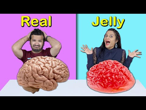 Real Vs Jelly Food Food Challenge | Food Challenge India | Hungry Birds