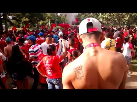 BANDERAZO - En el barrio San Fernando hay una banda - Yo soy de la Mecha - Baron Rojo Sur - América de Cáli - Colombia - América del Sur