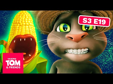 Corn Heads - Talking Tom and Friends | Season 3 Episode 19