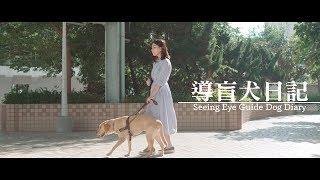 <h5>導盲犬日記 Seeing Eye Guide Dog Diary</h5><p>此為香港勞工及福利局贊助拍攝的導盲犬教育微電影,影片內容講述視障女主角為將電腦硬碟機帶到父親公司,在途所發生的不愉快事件。最後幸得途人協助,尋回掉失的硬碟機。影片中帶出視障人士雖有導盲犬協助,但仍需得到市民的體諒和對導盲犬服務的支持。</p>