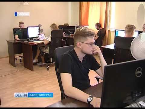 Сегодня отмечают День программиста онлайн видео