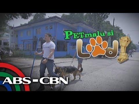 Mission Possible: PETmalu si Lodi
