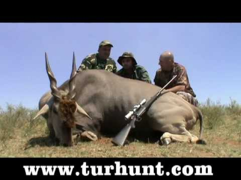 South Africa 2011 Sable & Eland hunt / ЮАР 2011 охота на