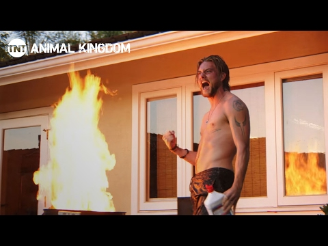 Animal Kingdom: Stunts | Behind the Scenes | TNT