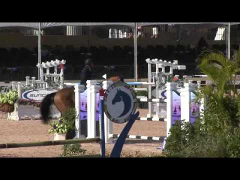 Video of ELIOS ridden by DARRAGH KERINS from ShowNet!