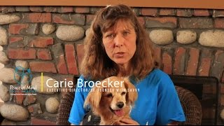 CARIE BROECKER | PEACE OF MIND DOG RESCUE STORIES SERIES